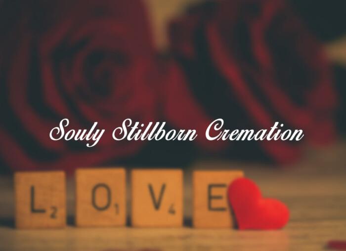 souly-stillborn-cremation